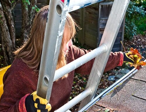 5 Projects To Tackle This Autumn